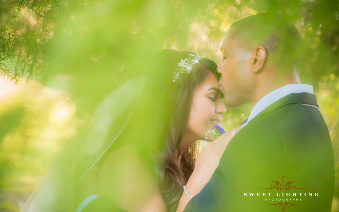 Vivien & Claude Sneak Peek Wedding Photos